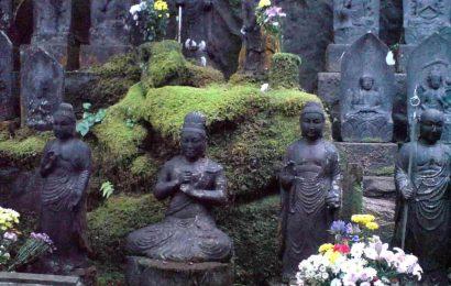 Faire la visite du temple Mitaki dera